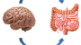 Problemi  GI trakta povezani sa genskom mutacijom image